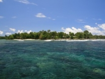 If you want great snorkeling spot in Vanuatu you can find it near Eratap beach island resort.